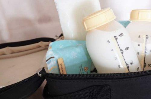 7 Rekomendasi Cooler Bag ASI Ransel Terbaik Menurut Review