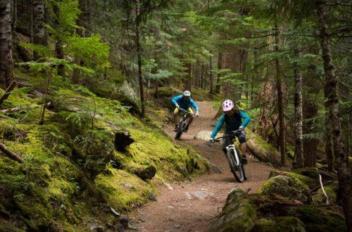 Hidup Lebih Sehat dengan 10 Pilihan Sepeda Gunung Terbaik Ini!